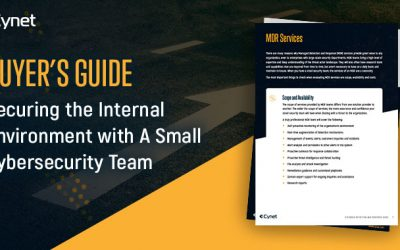 Buyer's Guide for Securing Internal Environment with a Small Cybersecurity Team